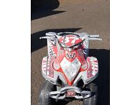 Fully Working Kids Electric Quad Bike