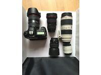 Canon EF 70-200mm IS F2.8L mark II + 2 X extender.