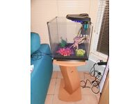 Aquarium with stand plus everything needed for tropical or shrimp