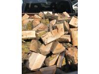 Seasoned softwood logs