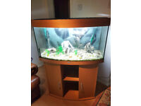 JUWEL VISION BOW FRONTED FISH TANK AND STAND FOR SALE,,FULL SET UP