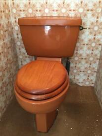 Retro coloured toilet