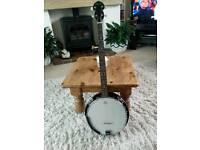 Ozark banjo