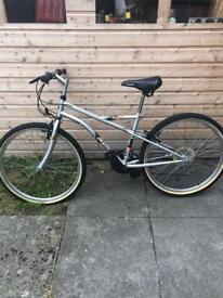 Adult mountain bike (stifle)