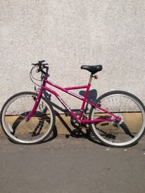 For sale a FABULOUS Female MOUNTAIN BIKE IN A ADULT SIZE in V.G.C. Hardly used