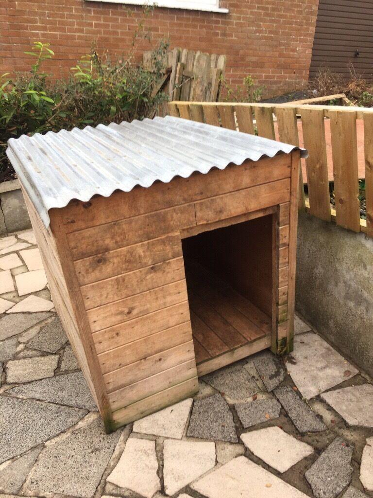 Big dog box