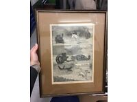 Scottish Antique Black and White Print Frame Picture