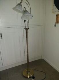 Brass dual lamp standard lamp