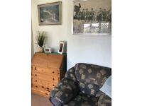Free to Collector Double sofa and armchair