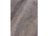 Chocolate brown carpet.