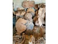 Burr elm wood (bowl blanks, slabs, spindles, burrs & planks) for Woodturning or carving