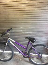 Girls/Ladies 18 speed mountain bike