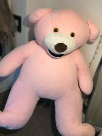 LARGE TEDDY FOR SALE