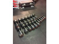 Commercial gym dumbbells weights