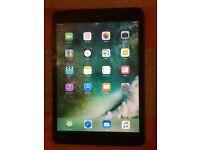 16GB iPad mini2 wifi and cellular(retina display)