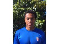 Professional Footballer Striker/Midfielder