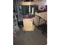 Fish tank full set up for sale