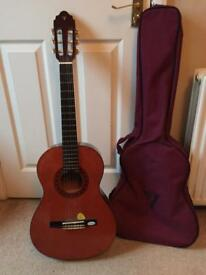Nubone guitar with case
