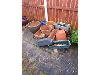 Plant pots (10 off)