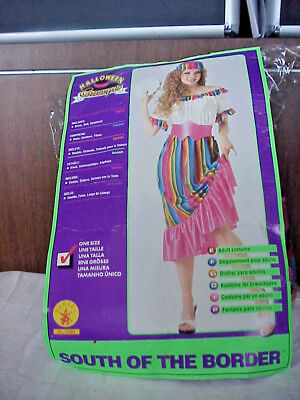 HALLOWEEN  COSTUME SOUTH OF THE  BORDER WOMEN'S  ONE SIZE FITS MOST - Halloween Costume Border