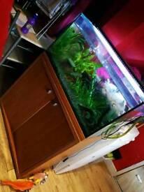 Fish tank setup read description