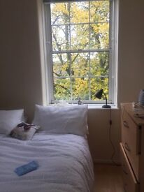 Beautiful spacious double room in the heart of islington