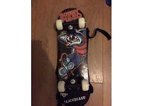 Small Shark skateboard