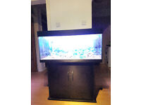 EXCELLENT CONDITIONS JUWEL RIO 180 LITER FISH TANK AND STAND FOR SALE FULL SET UP,