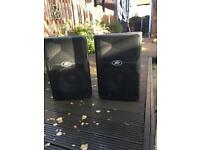 Peavey PVx 12 inch speakers
