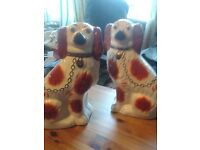Pair of brown and white Staffordshire dogs
