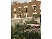 Stylish, huge one bed flat with unusually large private terrace