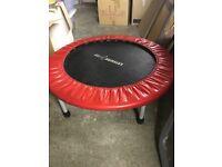 Leisurewise fitness mini trampoline
