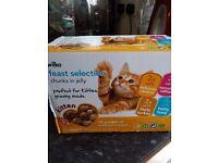 12 pack of kitten food