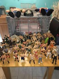 WWE wrestling collections