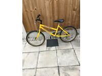 Girls Raleigh spicee mountain bike for sale!!