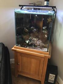 Full marine set up with oak stand and lid