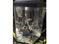 Fish tank hexaganal