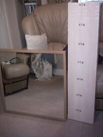 mirror and floating shelve