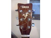YAMAHA F-310