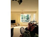 Room available in spacious 2 bed flat - Windsor. Close to the long walk.