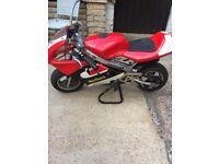 Red midi moto