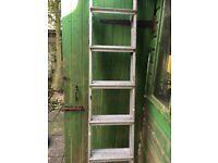 Five ladders