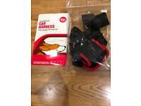 Small dog car harness