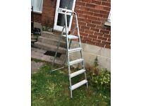 Beldray 5 step aluminum ladder