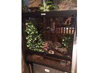 Exo Terra terrarium / vivarium / tank. Perfect for reptiles