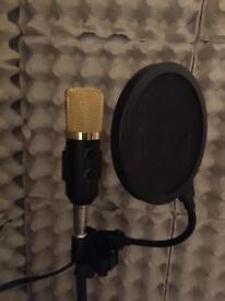 studio condenser mic