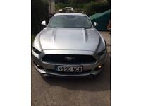 New Ford Mustang in silver with just 5000 miles