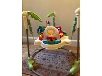 Baby bouncer: Fisher and Price Rainforest Jumperoo