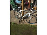 Carrera Virtuoso Road Bike 2015