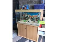 220l fish tank full set up with stand 2 x t5 light filter heater lid gravel nice ornament pump more